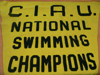 Yellow Swimming Banner