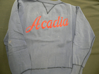 Blue Acadia sweatshirt